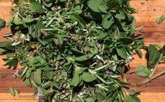Our Permaculture Life: Extending an abundant herb harvest - how to make f...