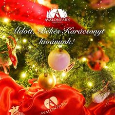 Áldott Békés Karácsonyt kívánunk! #karácsony #bekesseg #boldogsag Avalon Park, Holidays, Instagram Posts, Poster, Art, Art Background, Holidays Events, Holiday, Kunst