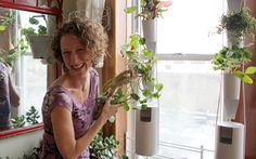 Windowfarms - You can grow almost anything in a Windowfarm. Experiment with your own favorites or buy seeds for some of our favorite plants ...