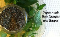 Herb Profile: Peppermint Katie - Wellness Mama 6 Comments Affiliate Disclosure  12+1 21Tweet 193Like 1.6kPin 0Share 0Share   Peppermint leaf...
