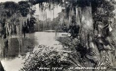 Bayou Teche at St. Martinville, ca. 1920.  Source: Postcard image, Shane K. Bernard Collection