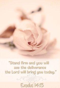 Exodus 14:13