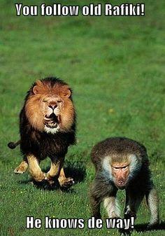 Hahaha! I love The Lion King:)
