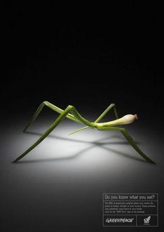 샤콘느가 흐르는 카니발 :: 광고디자인 (기발하고 창의적인 광고)