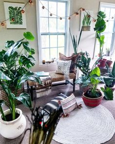 Green Beauty Product Makers Share a Bohemian-Inspired Holistic Family Home — House Call
