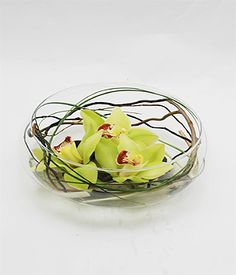Our Floating Elegance Design features Natural Willow is Curled Inside the a Classic Clear Bowl to Accent Three Fresh Green Cymbidium Orchids Floating on River Rocks in this Modern Design from Norfolk Florist. Beach Flowers, Cymbidium Orchids, River Rocks, Fresh Green, Flower Delivery, Table Centerpieces, Norfolk, Florals, Modern Design
