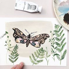 Day 83/100 of my #100dayproject and heres a Hawk moth! We had one of these in the garden a few weeks ago we were very happy to have her visit! The largest breeding moth in the U.K! I think she was quite poorly and we popped her in a box with leaves but she was gone by morning! - My 100 day project this year will be paintings of nature. Laced throughout this project will be 50 nature words that have been removed from the Oxford Junior Dictionary and based on the book The Lost Words. Im…