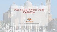 Passeggiando per Padova