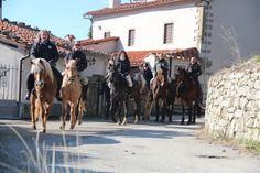 Trekking a cavallo da Mocale al Pratomagno. Silenzio/Natura