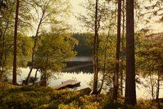 Sunset & view at Kaitalampi at Hawkhill Nature. Sunset Lake, Finland, Landscapes, Villa, Abstract, Architecture, Artwork, Nature, Plants