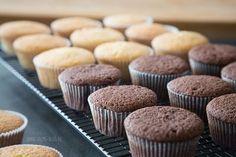 Sally's Muffin Grungrezept: Schoko/Vanillemuffins: 150 g weiche Butter, 150 g Zucker, 1 Pr. Salz, Vanilleextrakt, 2 Eier, 160 g Mehl und 30 g Kakao oder 190 g Mehl, ½ TL Backpulver, ¼ TL Natron, evtl. Milch