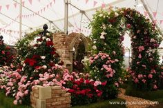 Peter Beales Roses exhibit inside The Festival of Roses Marquee, was chosen by the RHS judges as the Best Rose Exhibit, at the RHS Hampton Court Palace Flower Show Garden Arbours, Rhs Hampton Court, Judges, Flower Show, Love Flowers, Beautiful Roses, Arches, Exhibit, The Hamptons