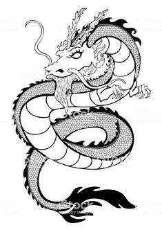 Dragon coloring, decorative outline black and white drawing, print, tattoo sketch, silhouette Cartoon Drawings Of Animals, Cartoon Girl Drawing, Animal Sketches, Dragon Tattoo Outline, Snake Outline, Snake Tattoo, Outline Drawings, Art Drawings Sketches, Tattoo Sketches