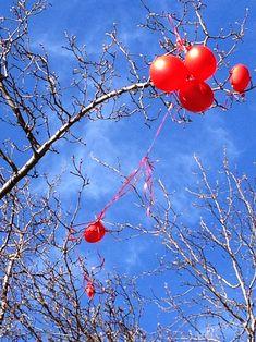 #redballoon #plastic #nature #observation #photography #nyc #artist #contemporaryart