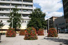 Überfüllte Parkplätze, schmale Bürgersteige, betonierte Flächen, unattraktive Gebäude…das sind die Kennzeichen der durchschnittlichen Wohnsiedlung. Diese kann aber schnell und einfach effektvoll gestaltet werden.  Quelle: www.blumentuerme.d ...