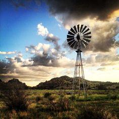 Texas Windmill                                                       …