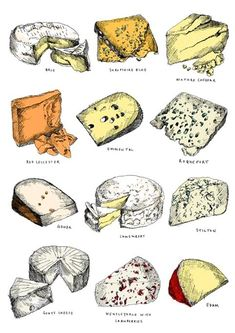 Twelve cheeses - May van Millingen's Food Illustrations Cheese Drawing, Food Drawing, Fromage Cheese, Turkey Burger Recipes, Food Sketch, Types Of Cheese, Tea Cakes, Kitchen Art, Food Illustrations