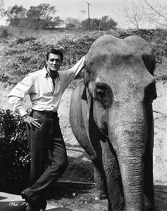 Rock Hudson and an elephant… Just because.