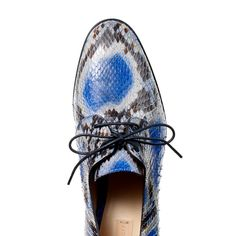 Shop Flat Oxford in Royal Multicolor   Reed Krakoff
