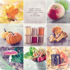 Kortti; Syksykollaasi | Anna-Mari West Photography Mind Power, Enjoy Your Life, Live Life, Poems, Anna, Peach, Apple, Messages, Table Decorations