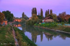 Timisoara - Bega Canal at dusk Travel Around The World, Around The Worlds, Bucharest, Our Planet, Trees To Plant, Dusk, Great Places, Architecture, Nature