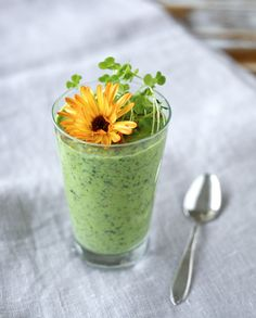 Today's breakfast was too pretty not to share: Creamy green smoothie topped with a beautiful (and edible) calendula flower from the garden, homegrown canola microgreens and walnuts pieces. Have a wonderful week! New Recipes, Vegan Recipes, Green Monsters, Calendula, Plant Based Diet, Food Design, Juices, Breakfast Ideas, Smoothie
