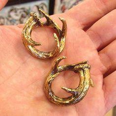 Sweet brass ear weights