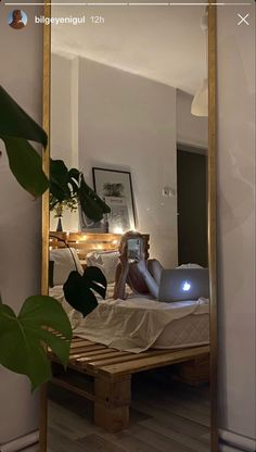 My New Room, My Room, Room Ideas Bedroom, Bedroom Decor, Bedroom Inspo, Aesthetic Room Decor, Aesthetic Plants, Dream Rooms, House Rooms