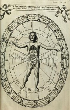 Athanasius Kircher | Diagram showing the sympathies between the macro and microcosm | Mundus Subterraneus (1665)