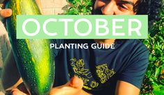 The Healthy Patch: Your October edible planting guide! Covering VIC, NSW, QLD, SA, WA, NT & TAS! For more free resources head to TheHealthyPatch.com.au.