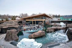 The Edmonton Valley Zoo has been awarded the top honour for outstanding achievement among Canada's accredited zoos and aquariums for the new Arctic Shores exhibit.