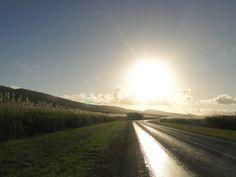 Der Weg ist das Ziel – Ein Hoch auf den Roadtrip!