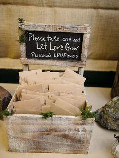 Wildflower seedling wedding favors