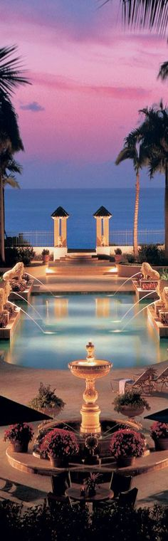 Ritz Carlton San Juan | LOLO
