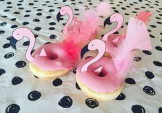 flamingo donuts - sweet and cozy flamingo donuts flamingo donuts – Pink Birthday Cakes, Birthday Treats, Party Treats, Birthday Parties, Pink Flamingo Party, Flamingo Birthday, Pink Flamingos, Aloha Party, Tropical Party