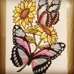 Beautiful sunflower and butterfly page by @ilsedeko using their Chameleon Pens! #chameleonpens #pen #marker #alcoholmarkers #markerpen #colour #color #colouring #coloring #sunflower #butterfly #create