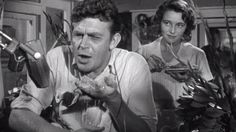 A Face in the Crowd starring Andy Griffith & directed by the great Elia Kazan Elia Kazan, Hollywood Actor, Classic Hollywood, Today Episode, Film Books, Showgirls, Old Movies, Nonfiction, Persona
