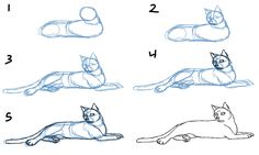 How to draw a cat, Using more than 2000+ easy exercises, learn how to draw cute cartoon characters and animals within minutes! Description from darkbrownhairs.net. I searched for this on bing.com/images