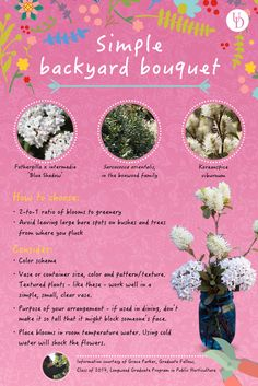 How to compose a beautiful, simple backyard bouquet