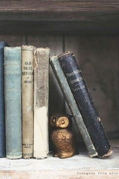 Thoughts from Alice: You're a Hoot {Owl Lover's Gift Guide} Old Books, Antique Books, Vintage Books, Idea Books, Ravenclaw, Anders Dragon Age, One Photo, Bookshelf Styling, Rustic Bookshelf