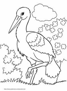 Printable Flower Coloring Pages, Animal Coloring Pages, Coloring Book Pages, Bird Drawings, Easy Drawings, Bird Embroidery, Embroidery Patterns, Planet Crafts, Animal Skeletons