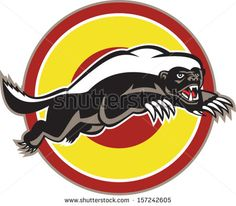 Illustration of a honey badger (Mellivora capensis) mascot also known as ratel leaping viewed from side set inside circle on isolated white background. - stock vector #honeybadger #retro #illustration