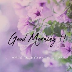 Looking for for images for good morning motivation?Browse around this website for cool good morning motivation inspiration. These funny quotes will you laugh. Good Morning Images Flowers, Latest Good Morning Images, Good Morning Picture, Good Morning Greetings, Good Morning Good Night, Morning Pictures, Good Morning Wishes, Good Morning Messages, Cute Good Morning Texts