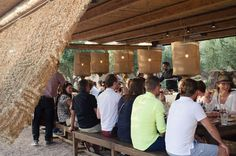 "Athens Farm Dining Experience A unique farm in Athens offering a ""farm to fork"" dining experience. A journey of food, wine and farm life awaits you. Giving you the chance to experience authentic farm life and organic Greek dining in a beautiful natural rural environment. Each menu is carefully selected and based on the vegetables in season. Live music to enhance the experience.A Farm Tour with dinner, drinks and music. A truly unique experience in Athens! When you arrive at th..."