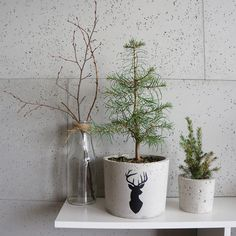 GrowRaw is a simple, minimalistic design. Concrete unique items, created with…