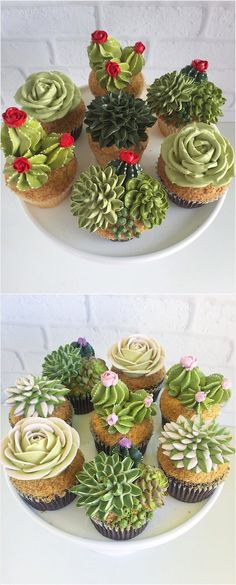 Succulent Icing Cupcake Arrangements
