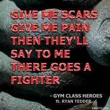 The fighter- Gym Class Heroes