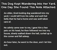 The note around the neck of this dog was just mind-blowing!!! (Click to Enlarge).