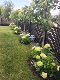 59 Fresh Front Yard and Backyard Landscaping Ideas for This Season - All For Garden Flower Garden Design, Backyard Garden Design, Backyard Patio, Backyard Ideas, Concrete Backyard, Garden Ideas, Fence Ideas, Patio Ideas, Courtyard Design