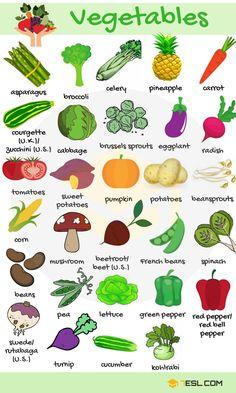 Vegetables in English! List of vegetables with images and examples. Learn these vegetables names to increase your vocabulary words about fruits and vegetables in English. Also, interesting vegetables images help you remember the new words better. Learning English For Kids, Teaching English Grammar, English Lessons For Kids, English Worksheets For Kids, English Writing Skills, Kids English, English Vocabulary Words, Learn English Words, English Language Learning